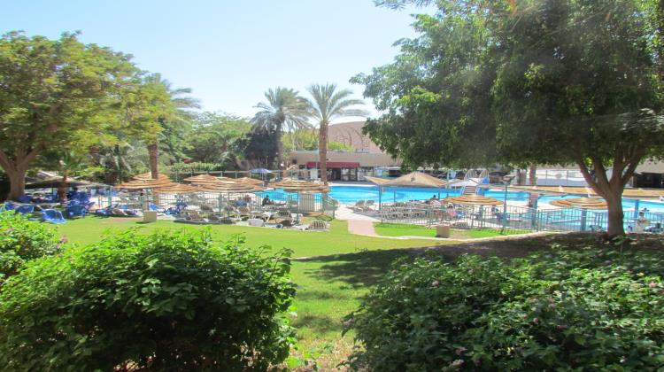 Swimming Pool, Club In Eilat
